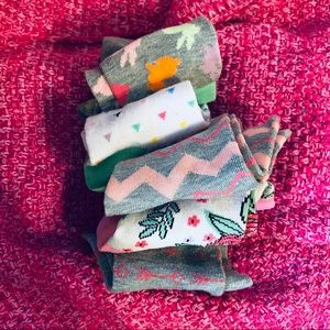 Lot of 8 Seasonal Sock Bundle Women's size 9-11